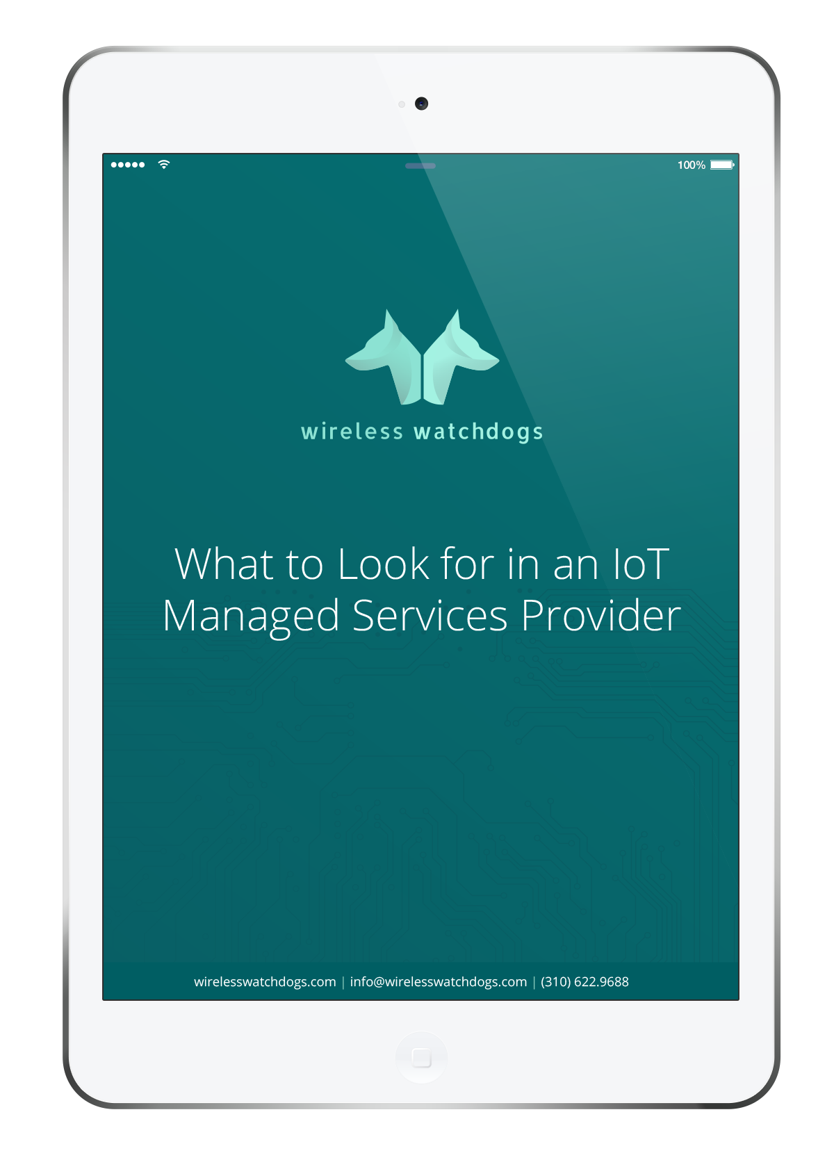 What to Look for in IoT Managed Services Provider