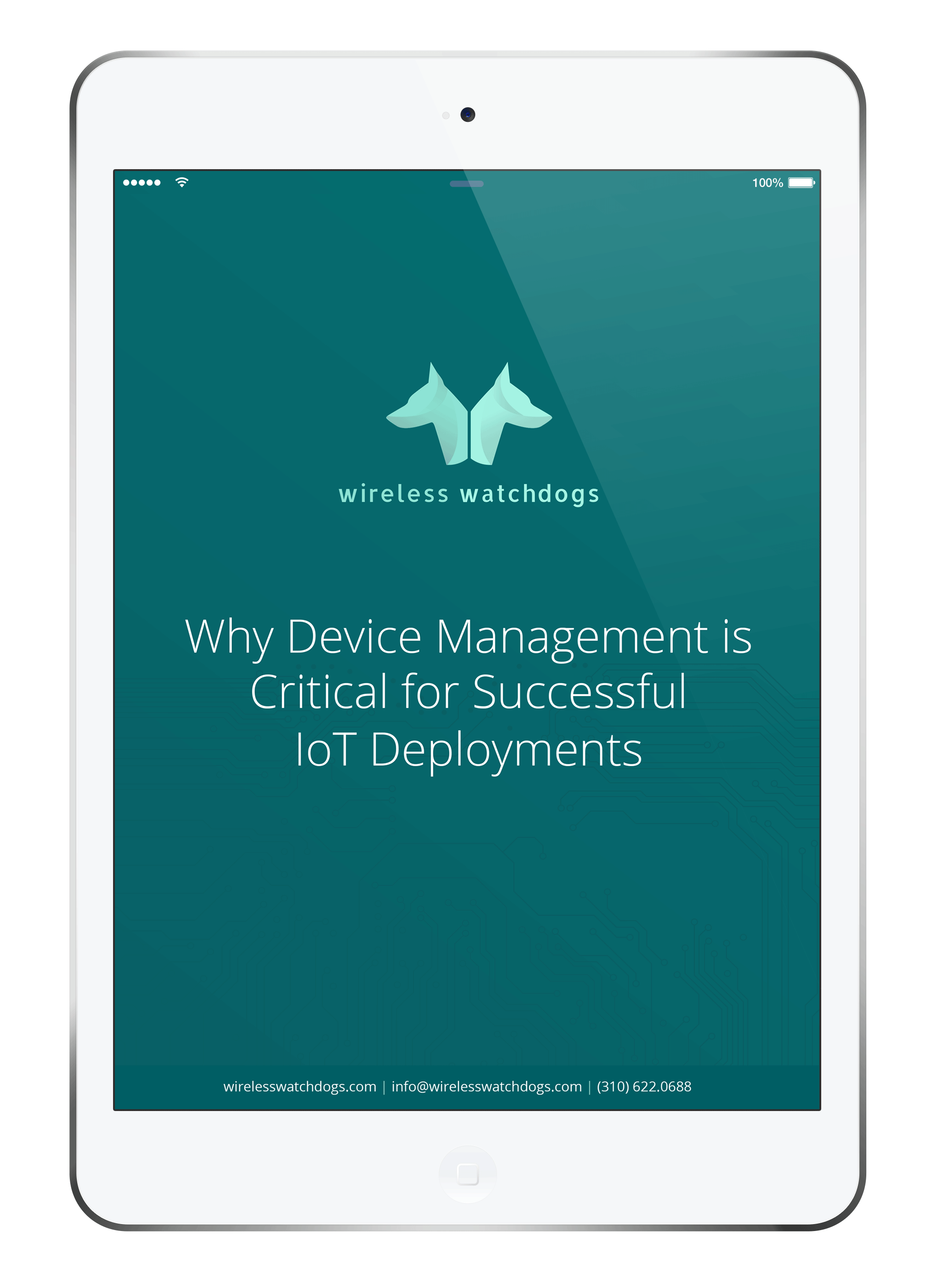 White Paper: Why Device Management Is Critical for Successful IoT Deployments