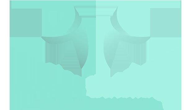 Wireless Watchdogs A Dataprise Company