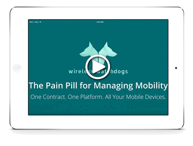 ww-pain-pill-video-mockup